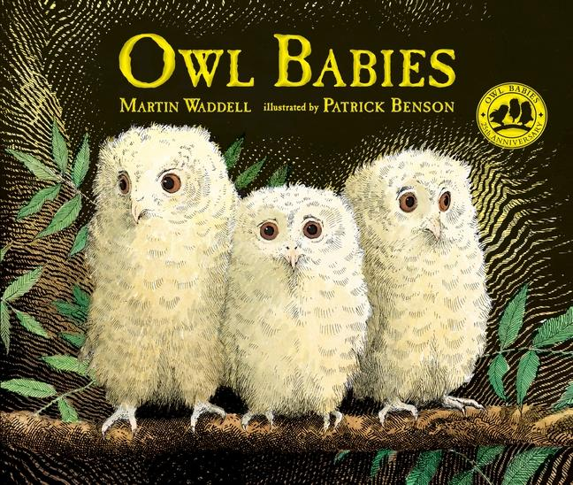 Image result for owl babies book