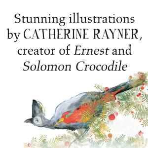 catherine rayner creator of ernest and solomon crocodile