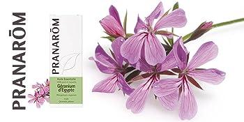 Huile essentielle ; aromathérapie scientifique ; expert ; Geranium d'Egypte