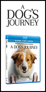 a dog's journey, dogs journey, movie, dvd, bluray, book, novel, bruce cameron, dog movies, family