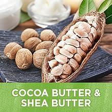 cocoa butter coco butter stretch mark stretch mark cream tummy tummy butter