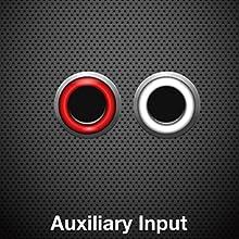 Auxiliary Input