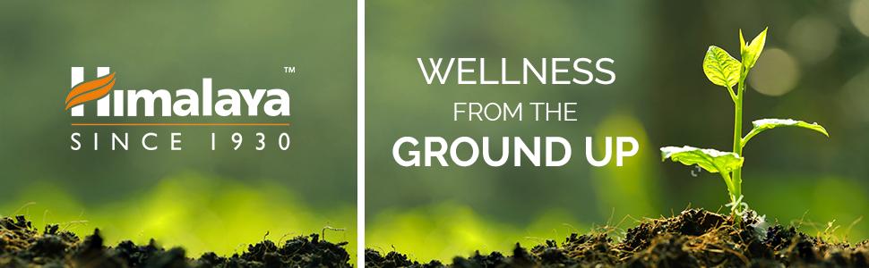 Himalaya Wellness Banner