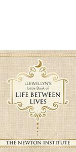Michael newton, newton institute, journey of souls, life between lives, wisdom of souls