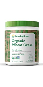 Wheat Grass Barley Alfalfa