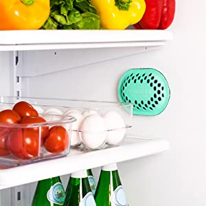 remodeez activated charcoal deodorizer refrigerator keep produce fresh remove odors