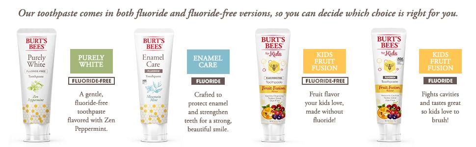 Burt's Bees Clean & Fresh Fluoride Mint Medley