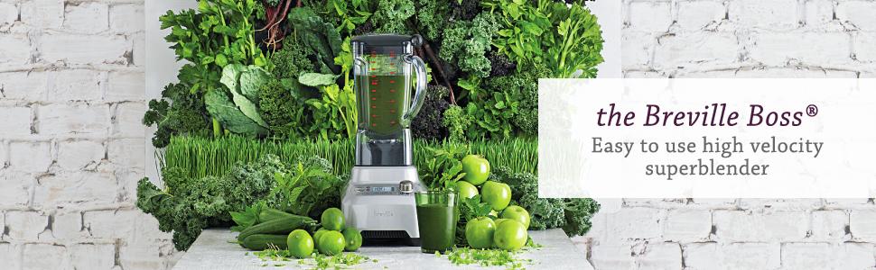 summer green grass fruits vegetables