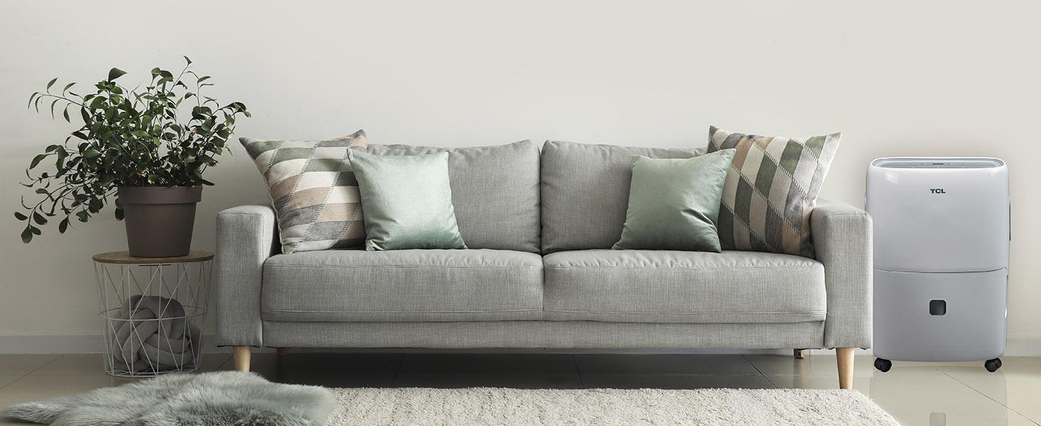 Discover a Healthier Home Environment