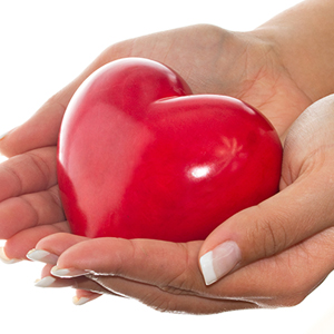 The Heart Protector: