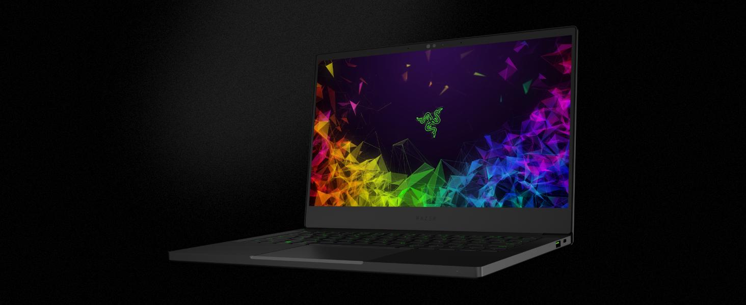 Razer Blade Stealth 13 Ultrabook Laptop: Intel Core i7-8565U 4-Core, NVIDIA  GeForce MX150, 13 3