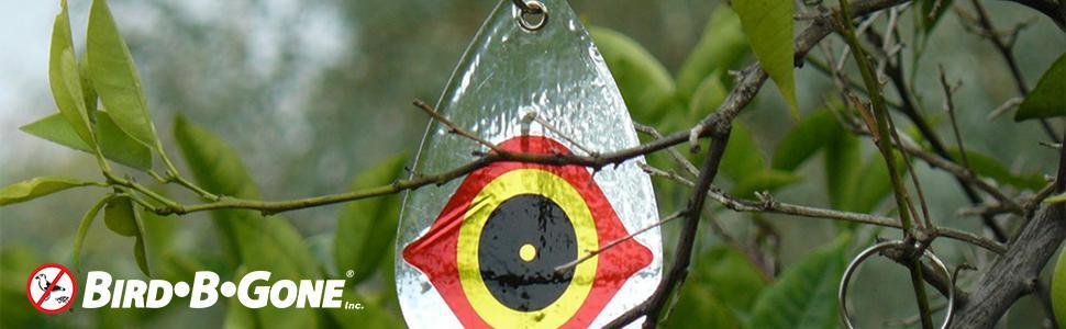 Amazon Com Bird B Gone Reflective Scare Bird Diverter