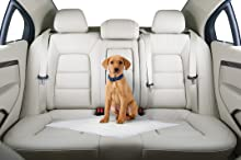 Protecting car seats
