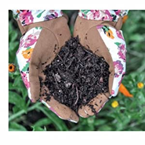 A Compost Recipe for Success