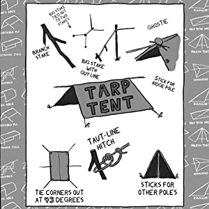 science,nature,activities,camping,bears,recreation,adventure,scouts,forest,forage,tent,kids,outdoors