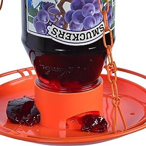 oriole feeder, oriole jelly feeder, jelly feeder, smuckers, jelly jar