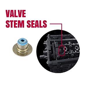 Fel-Pro-Valve_Steam_Seals