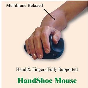 Handshoe Mouse