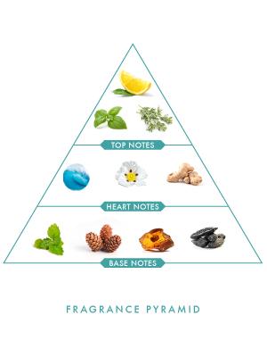 Wild Stone Edge Spray Perfume