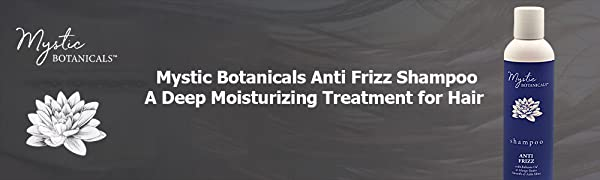 Anti Frizz Shampoo