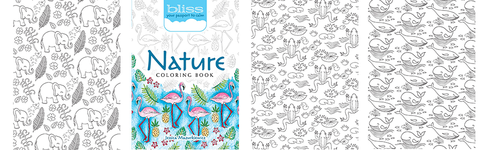 Amazon.com: BLISS Nature Coloring Book: Your Passport To Calm (Adult  Coloring) (9780486818863): Mazurkiewicz, Jessica: Books