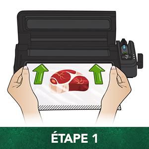 foodsaver etap 1