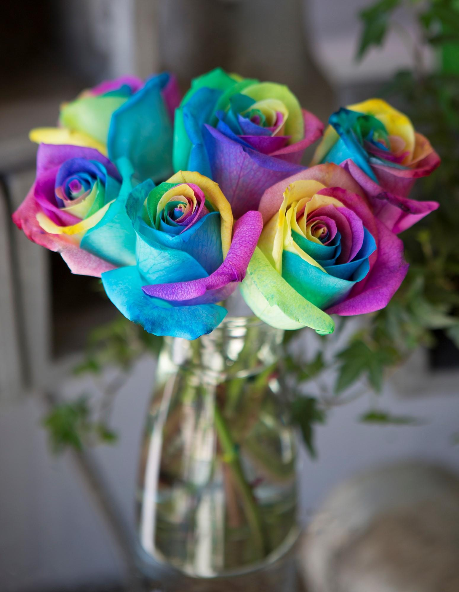 Kabloom bouquet of fresh cut rainbow roses 6 for How much are rainbow roses