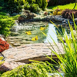 2 x Teichente Garten Dekoente Lockente Schwimmente Ente Schwimmen Teich Erpel