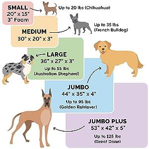 product; comparison; size; chart; dimensions
