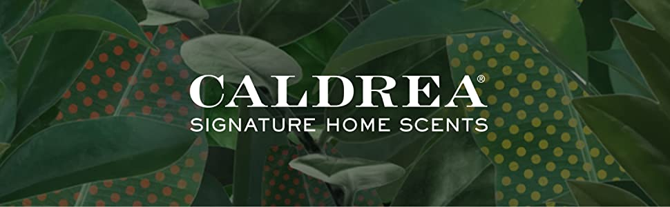 Caldrea Aromatherapeutic Living