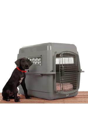 8032e460906a petmate navigator pet kennel 40, petmate x-large, travel dog kennel xlarge,