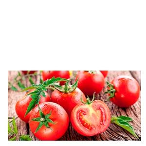 トマト カゴメ デルモンテ ケチャップ ハインツ ナガノトマト カットトマト ピューレ トマトペースト