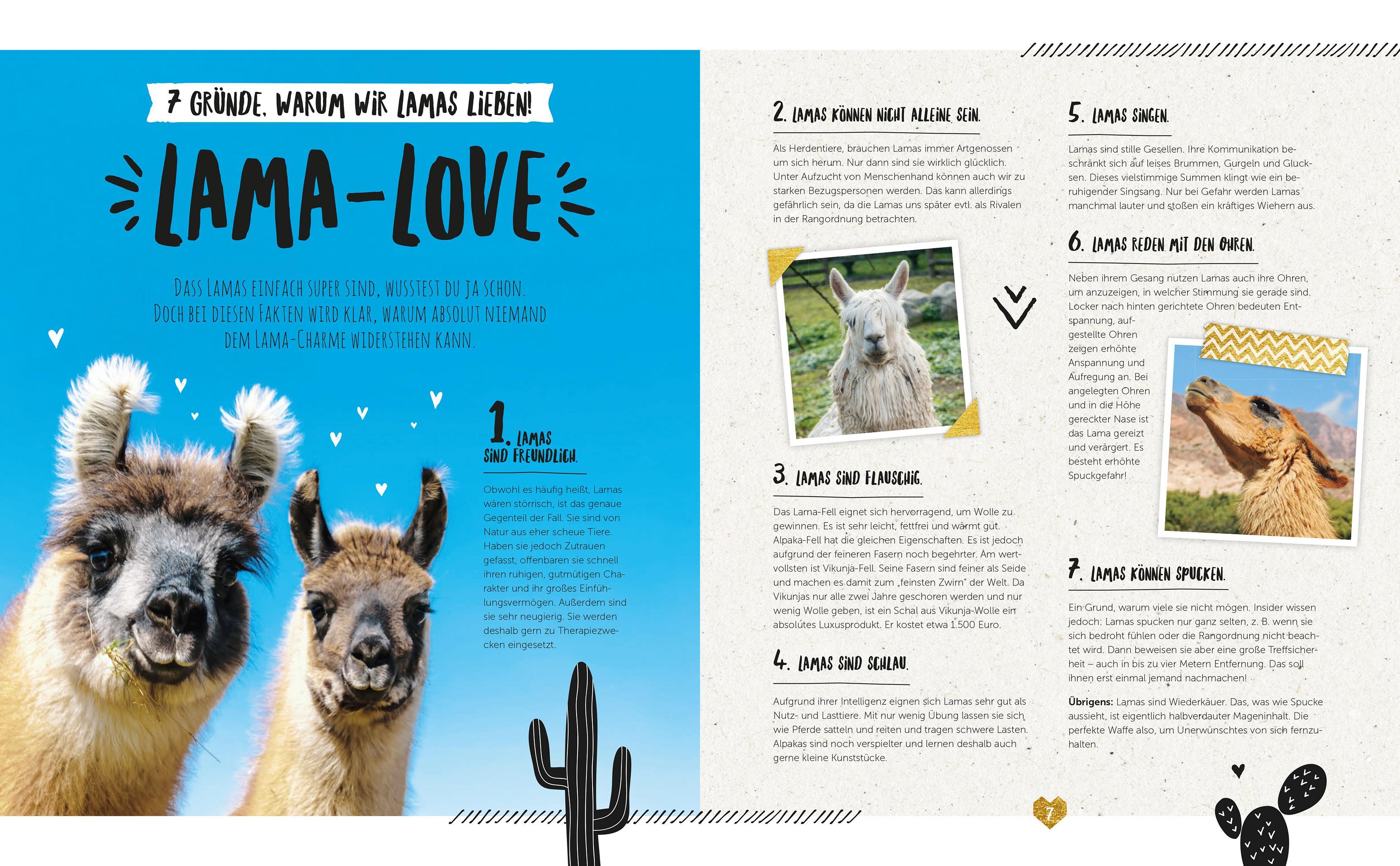 Das Grosse Lama Fanbuch Basteln Backen Selbermachen Amazon De Bucher