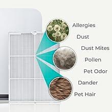 Pure HEPA dust dander pollen pet odor dust mites