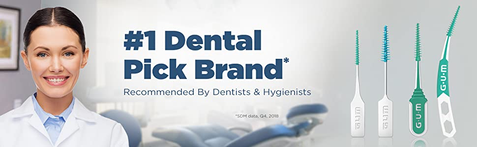 dental recommended dental picks hygiensists