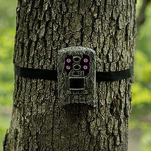 Trigger Yoke Quest Allen Camera Gen3 Hammers Telescopic Tripod Hunters Hunting Mossy Oak Dead Deer