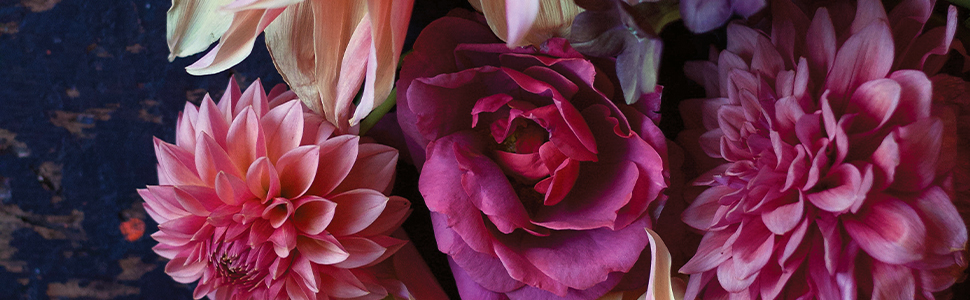 Floral arrangement in pink from Cultivated close up