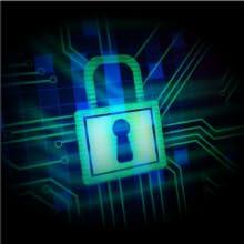 Amaryllo 256-bit military level grade encryption protection privacy data