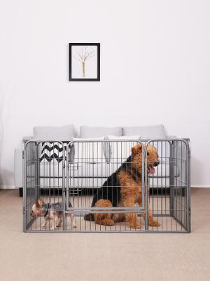 Dos mascotas muy traviesas, adoptadas en un hogar, Songmics, una compañía llena de vida y con montones de cosas divertidas para mascotas.