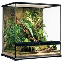 terrario de vidrio; terrarios exoterra; reptiles