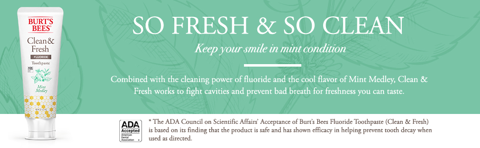 Burt's Bees Clean and Fresh Toothpaste