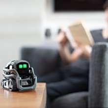 companion-robot, smart-robot, robot-assistant, voice-activated, smart-home, intelligent, alexa