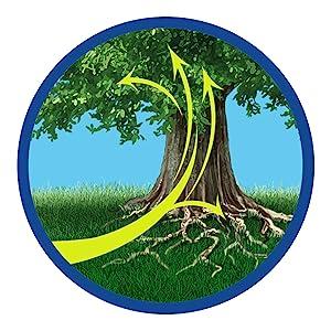 Tree and Shrub Feed