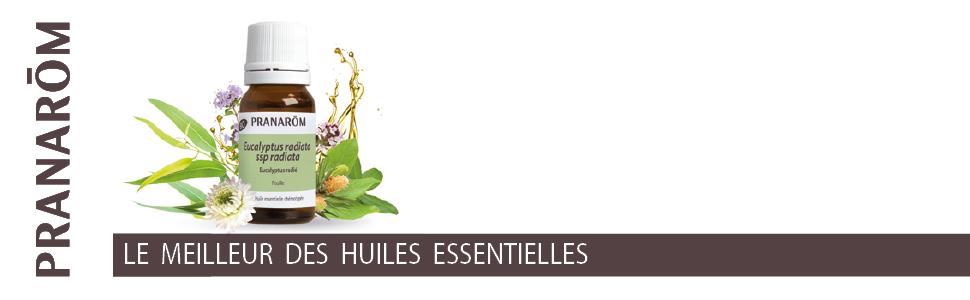Huiles essentielles biologiques, aromathérapie, soins naturels, phytothérapie, plantes, chémotypée