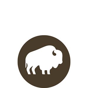 USA Bison dog food