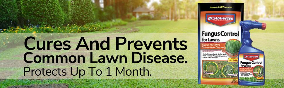 lawn fungus control red thread brown spot propiconazole disease moss