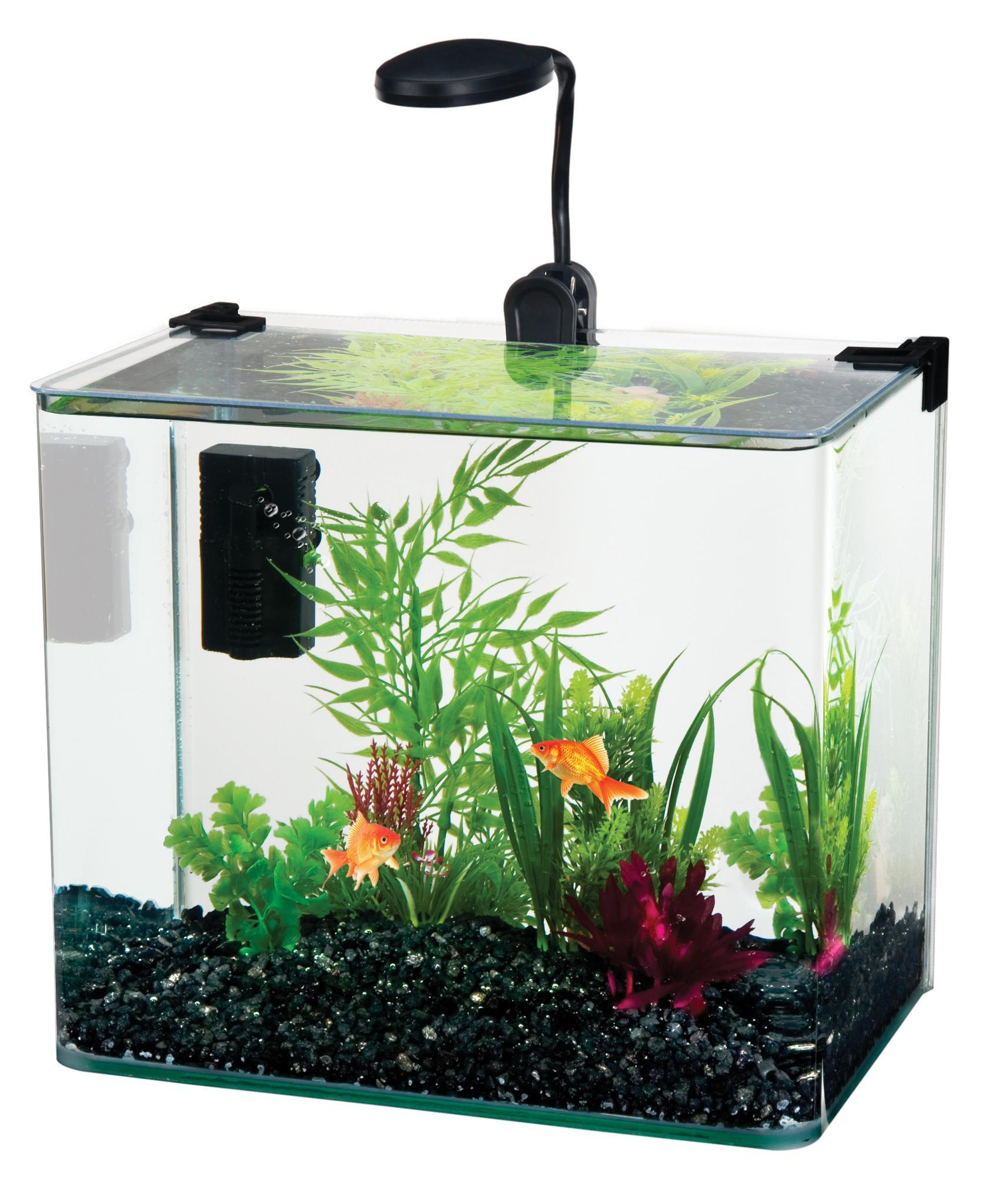Curved Corner Glass Aquarium