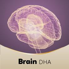 healthy brain, active mind, Omega-3 fatty acids, DHA, normal brain function, Seven Seas