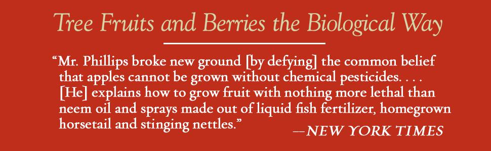 apple, organic, biological, blueberries, pears, plums, stone fruit, elderberry, cherries, peaches
