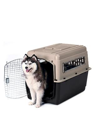 Amazon Com Petmate Ultra Vari Dog Kennel Heavy Duty No